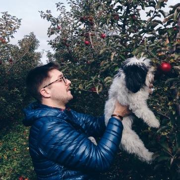 grafton wi apple picking