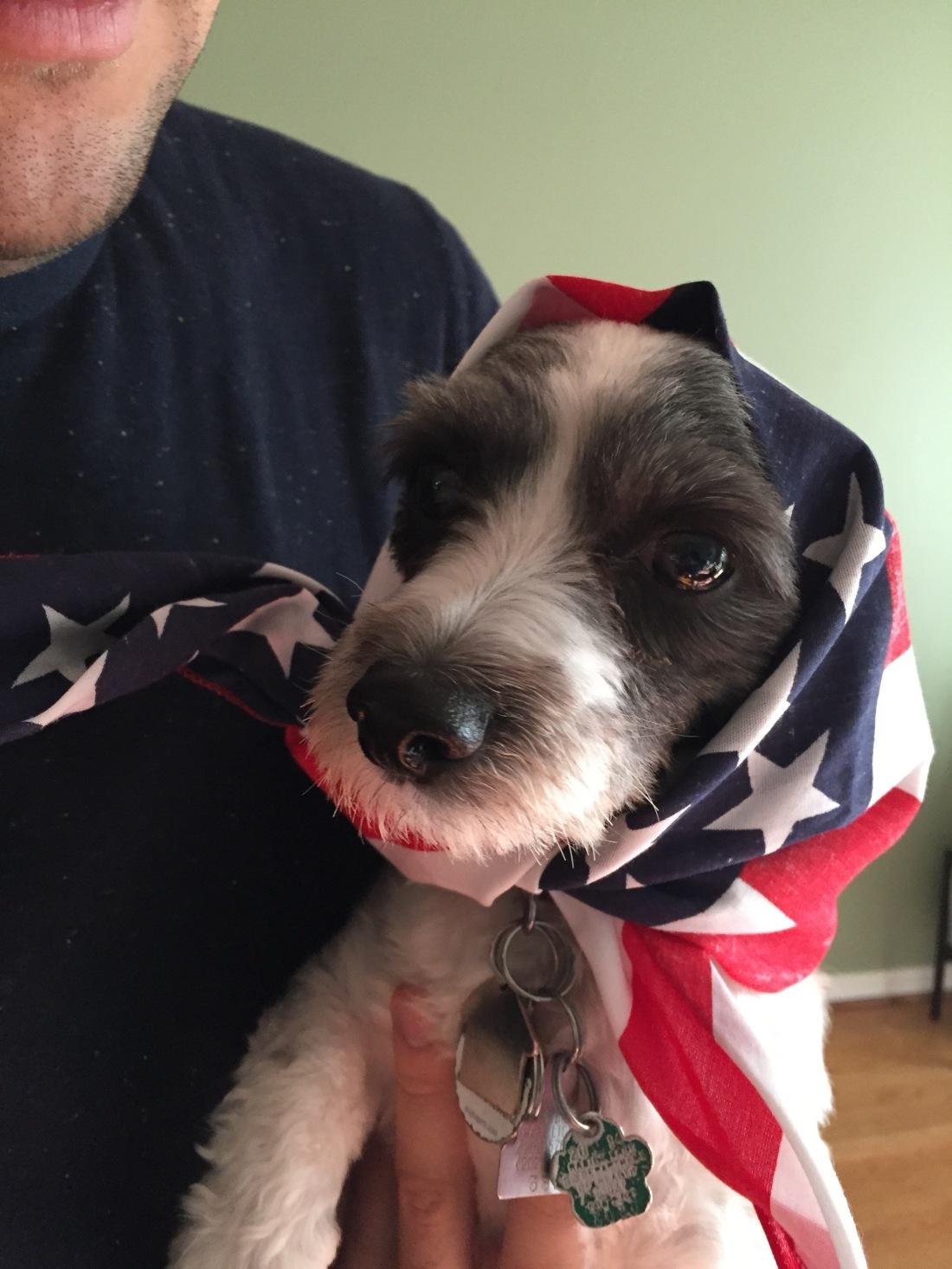 patriotic tilly memorial day_reidmore